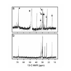 3C NMR spectra of PfTx from Pfiesteria. (a) PfTx from P. shumwayae (strain CAAE1024C) after size exclusion (HW40F column) and subsequent passage through three sequential C18 columns using d4 methanol (*) as a solvent. This material, from a fish-fed culture, shows multiple molecular species (congeners) compared with b; arrows indicate peaks in common with b. (b) PfTx from algae-fed P. piscicida (strain CCMP1832) after the same chromatographic steps used to generate a, followed by passage through a bidentate column using 100% HPLC-grade water as a solvent. From Burkholder et al. (2005, PNAS).