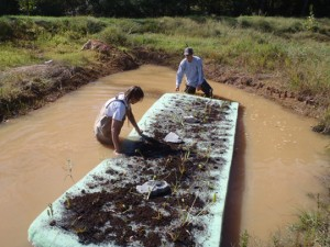 Clean Water Management Trust Fund- Wake Forest Station